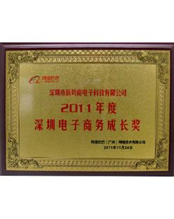 新岭南-阿里巴巴深圳电子商务成长奖